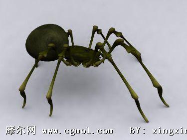 绿蜘蛛3d模型,爬行动物