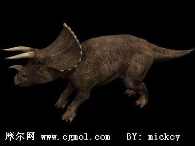 三角龙模型,爬行动物,动物模型
