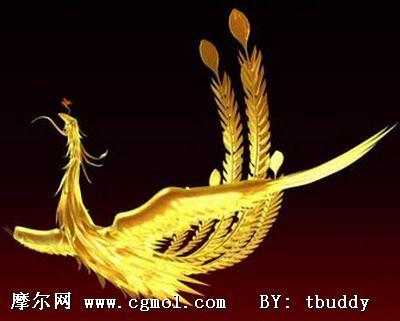 3d凤凰,飞禽动物,动物模型