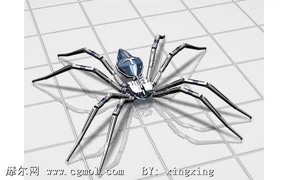 3d蜘蛛模型,昆虫,动物模型