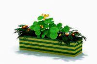 美丽植物3D模型