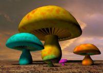 可爱蘑菇3D模型