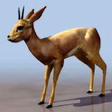 小梅花鹿3D模型