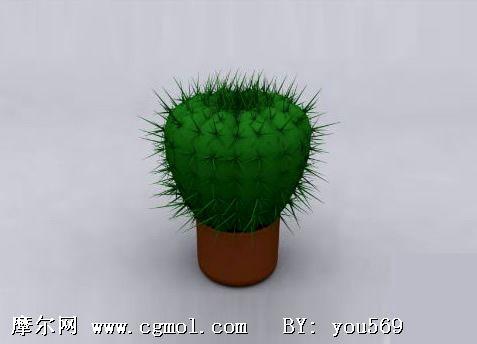仙人球3D模型