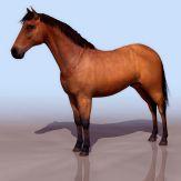 马3D模型