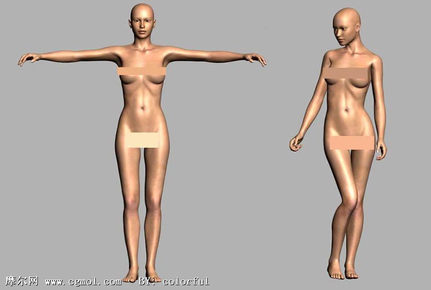 超精细女人体3d模型