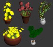 5款植物盆栽3D模型