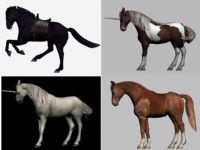 各种已绑定的带动画的次时代马和独角兽3D模型组合