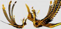 金黄色的凤凰MAYA动物模型