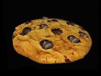 美味曲奇饼干3D模型