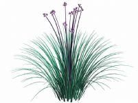 漂亮的开花植物3D模型
