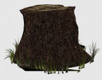 圆形的树桩,3D园林景观模型