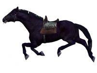 已绑定带小跑动画的次时代马3D模型