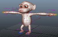 �定做得很好的猴子,maya模型