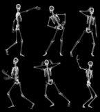 跳舞的骷髅,骨架,maya模型