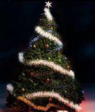 漂亮的圣诞树3D模型