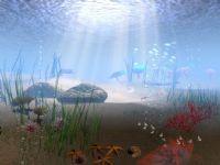 漂亮的海底世界maya场景模型(有海星,海胆,海草,海螺)