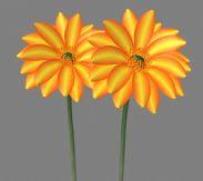 两朵小黄花,花朵,maya模型