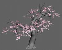 桃树3D模型
