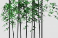 简单的竹子模型