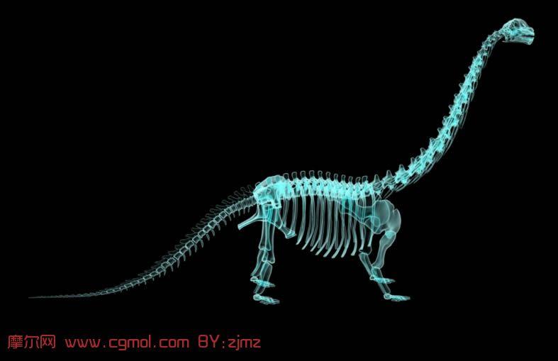 透视下的长颈龙,恐龙,骨架,maya模型 其他 动物模型