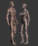 男女人体3D模型