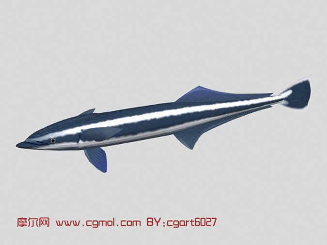 鲨鱼3d模型,鱼类动物,动物模型