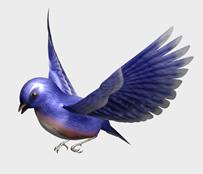 飞行的鸟3d模型