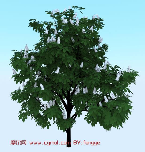 石榴树3d模型