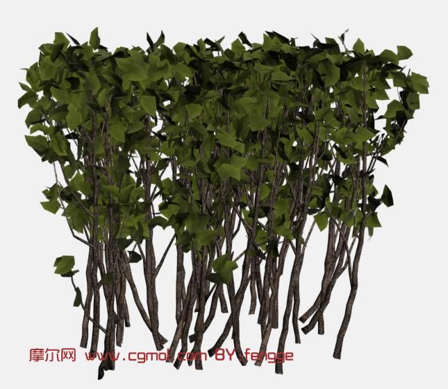 绿化灌木3d模型