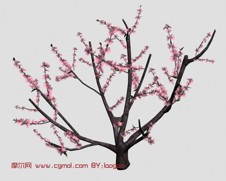 桃树树干简笔画_桃树修剪技术图解_卡通桃树_桃树 简笔画 - 黑马素材