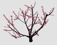 桃花,桃树3d模型