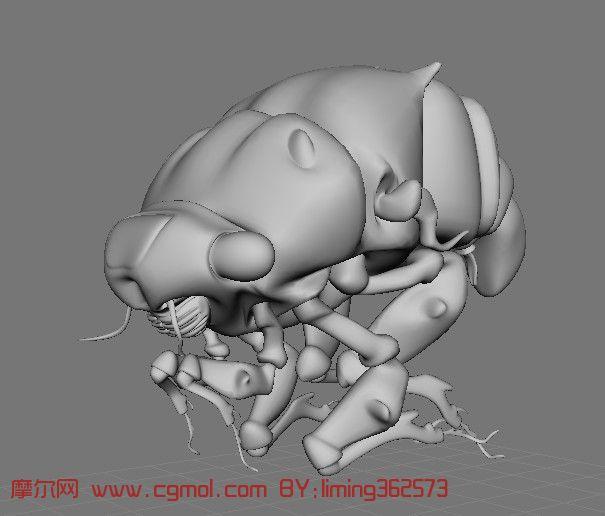 跳蚤maya简模,昆虫,动物模型,3d模型免费下载,cg模型