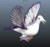 鸽子,maya动物模型(带骨骼)
