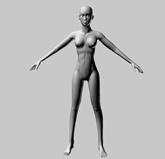 人体,女性,人物3D模型