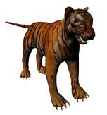 老虎maya模型(附带高精度贴图)