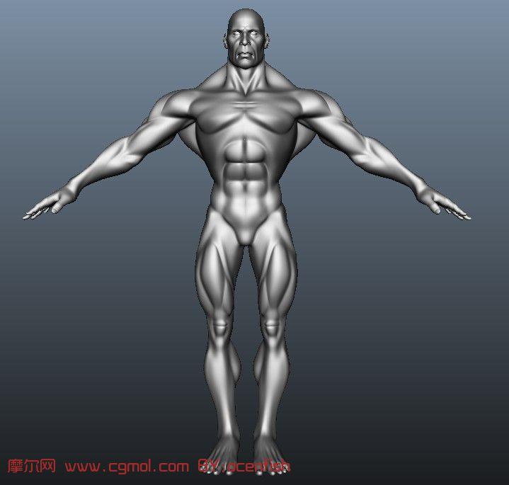 精品真实肌肉男人体 大型准确布线均匀maya模型