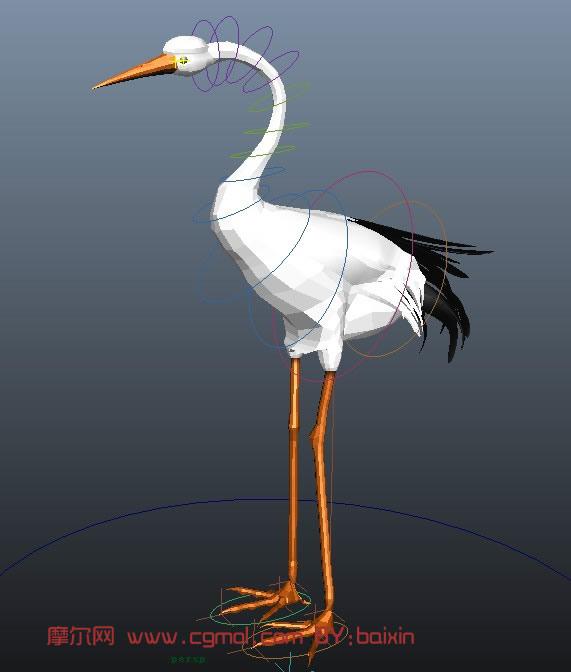 动物模型 飞禽动物  标签:maya动物飞禽鹤绑定