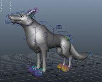 狼王maya模型(带绑定)