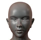 女人头部练习3D模型