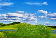 蓝天草原的草地,maya场景模型,背景是图片