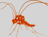 机械蚊子3D模型