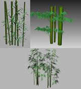 各类竹子,竹林3D模型