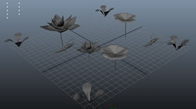 池塘戏虾,池塘生物maya模型