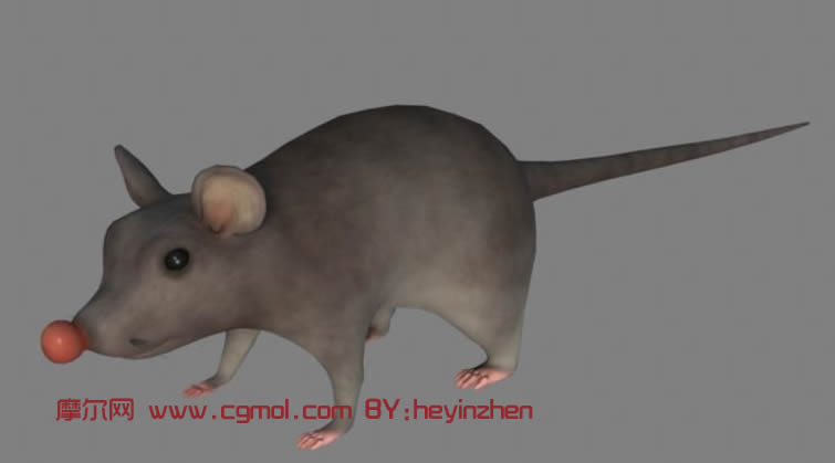 maya卡通老鼠模型,哺乳动物