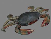 螃蟹3D模型(带贴图)