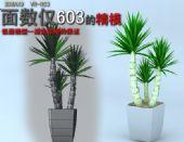 低面盆栽植物3D模型