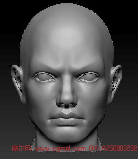 人头,角色3d模型