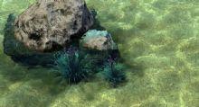 水波荡漾,水的动画场景,流体动画,3D特效模型