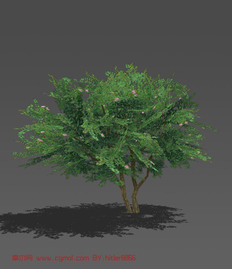 植物模型 树木模型  关键词:树 作品描述:低模树,很适合游戏或者虚拟